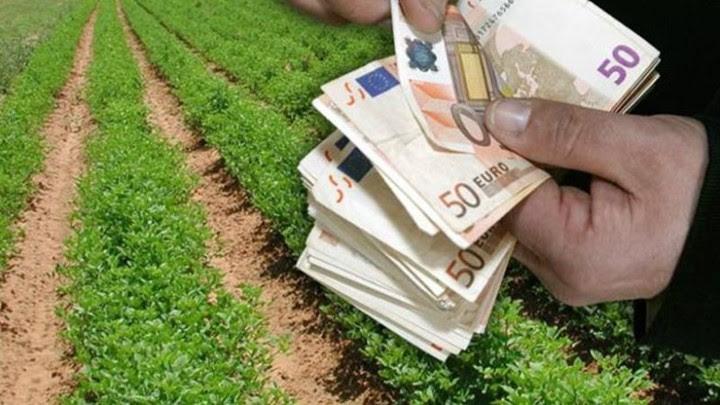 Επιδότηση έως 90% για επενδύσεις στα γεωργικά προϊόντα
