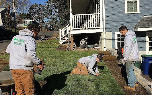 Our latest Sod Installation. | Gallagher Landscaping, Braintee Scituate