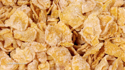 FDA claims Frosted Flakes are healthier than avocados, highlighting agency incompetence and corruption
