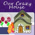 Our Crazy House