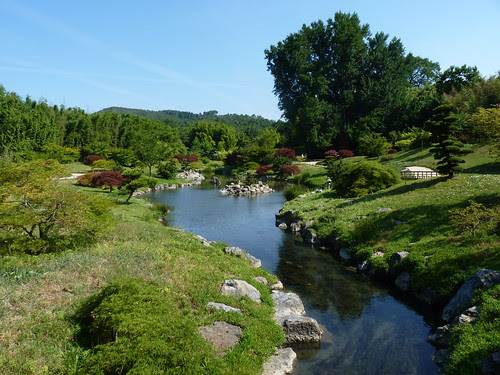 Dragon garden by la casa a pois