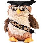 """9.2"""" Graduation Owl Plush Stuffed Animal with Glasses & Academic Cap, High School College Gift for Him or Her"""