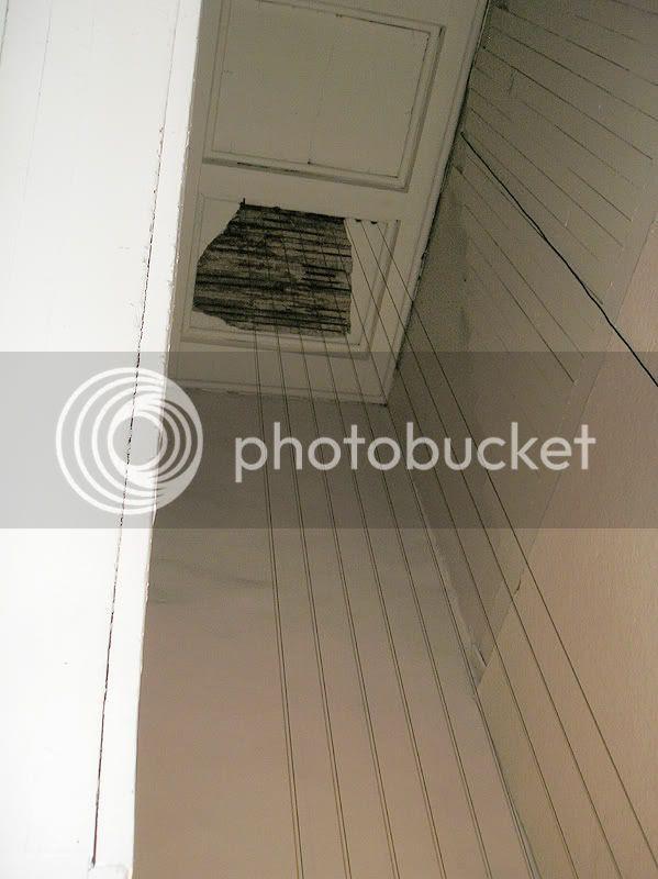 photo P9135618.jpg