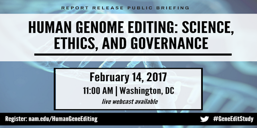 Human Genome Editing: Science, Ethics, and Governance: Public Briefing