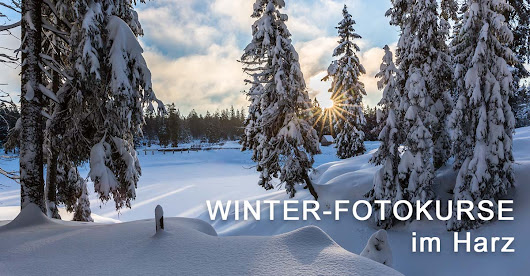 Winter-Fotokurse im Harz