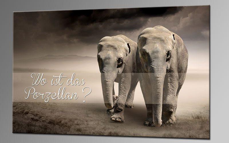 Schöne Sprüche Elefant | tolle sprüche leben