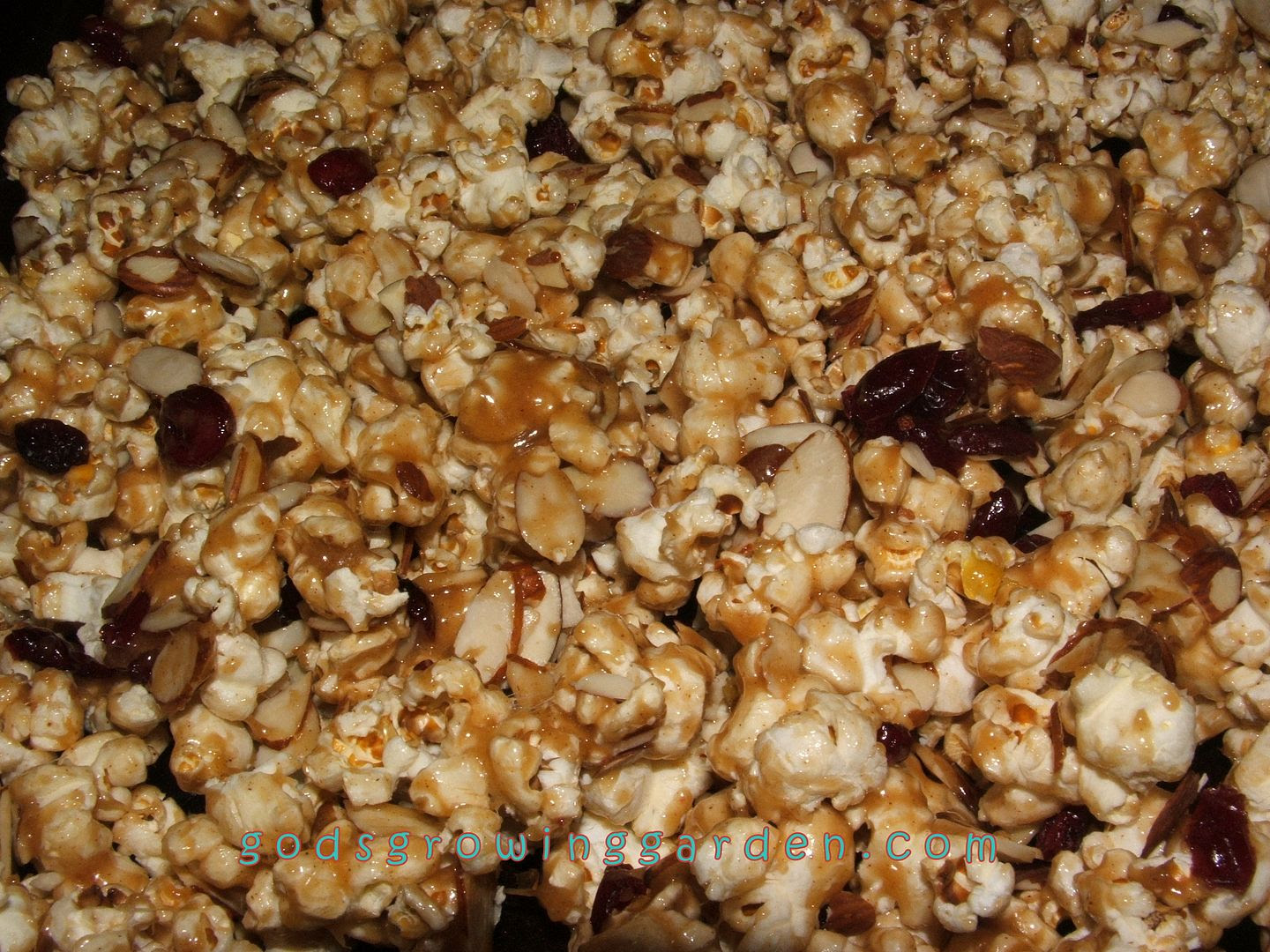 caramel popcorn by Angie Ouellette-Tower for godsgrowinggarden.com photo 007_zps6cf9d867.jpg