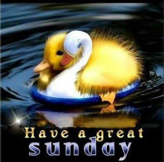 Have A Great Sunday Pictures Photos And Images For Facebook