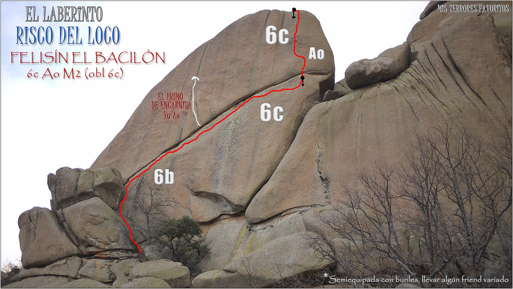 RISCO DEL LOCO - FELISÍN EL BACILÓN 6cAoM2 (6c obl) - EL LABERINTO