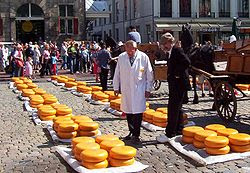 Wheels of Gouda cheese on sale at Gouda's cheese market