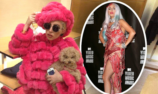 Backlash against Lady Gaga as she defends wearing fur and brands animal activists 'childish'