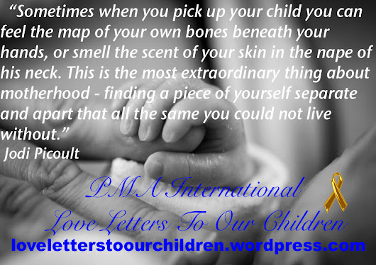 Jodi Picoult Quote Love Letters To Our Children