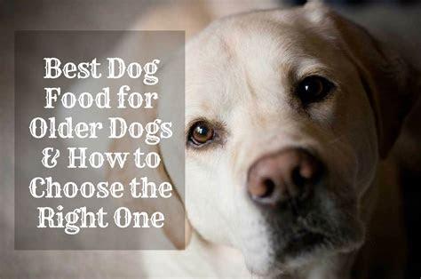 dog food  older dogs healthy diets  seniors