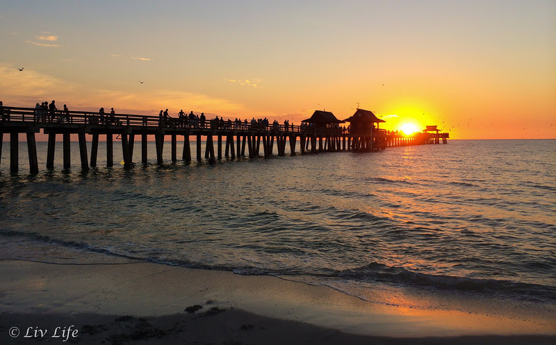 Pier at Naples Florida