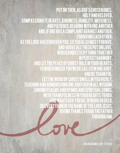 Collosians   Faith, Love and Quotes   Wedding bible