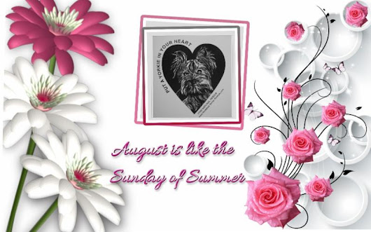 Yorkie Times ~ August 2018