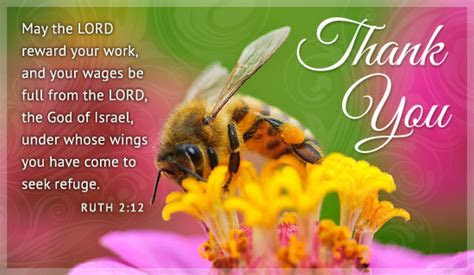 Free Thank You Bee eCard   eMail Free Personalized Thank