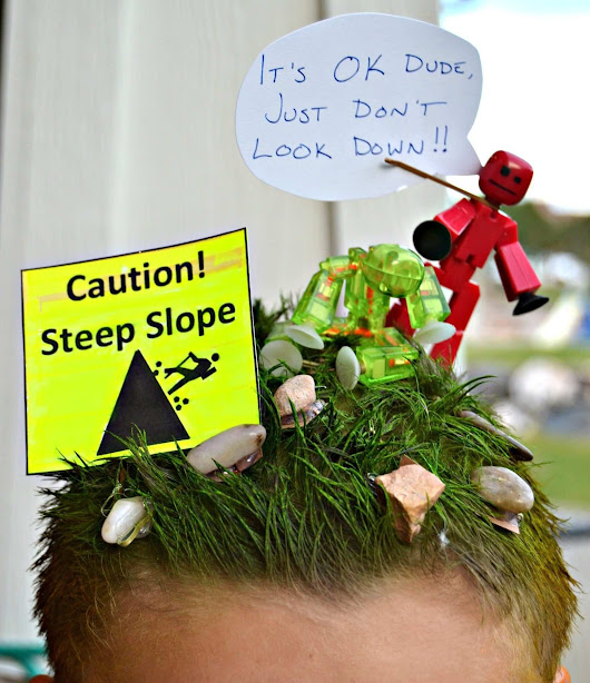 Stikbots Crazy Hair Day Idea for Boys - Lou Lou Girls