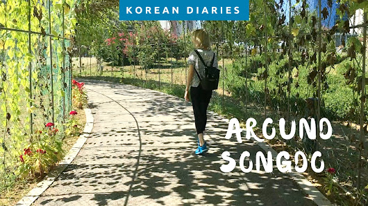 A Day In Songdo Central Park, Incheon (video) • Wonderlifeofsara