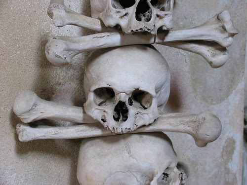 Real Skull Crossbones It Never Occured To Me That The