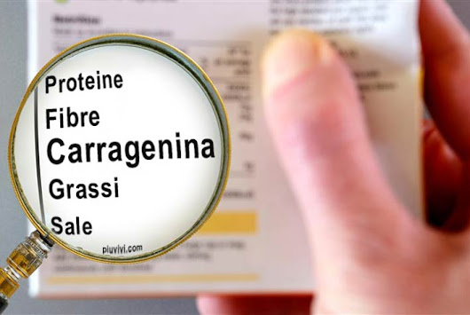 Carragenina (E407): Cos'è? Fa male?