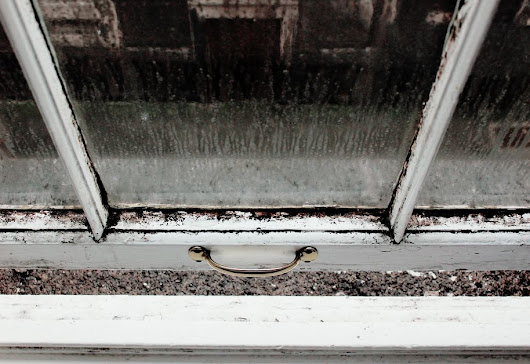 Seal the deal: how to prevent damp and keep your property mould free | James Anderson Estate Agents