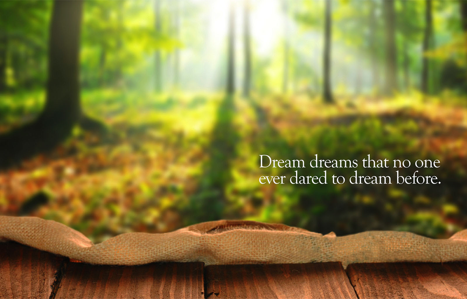 Dream Dreams Inspirational Quotes Quotivee