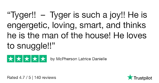 McPherson Latrice Danielle gave Fancypoo4u 5 stars. Check out the full review...