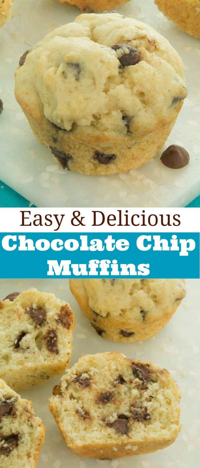 Easy Chocolate Chip Muffins - Gal on a Mission