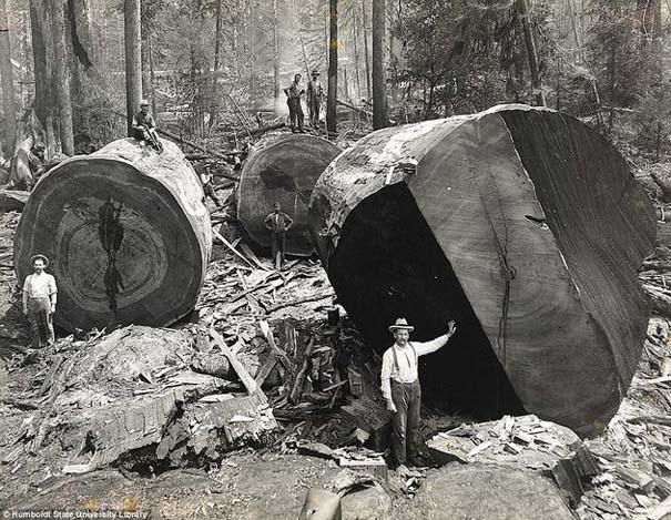Σπάνιες ιστορικές φωτογραφίες (6)