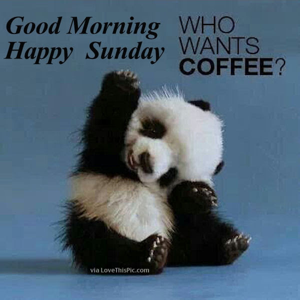 Good Morning Happy Sunday Who Wants Coffee Pictures Photos And