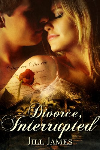 Divorce, Interrupted (The Lake Willowbee Series) by Jill James