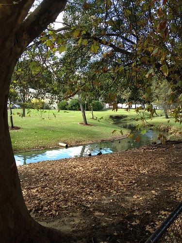 Duck Creek by Jimmerish MoBlog