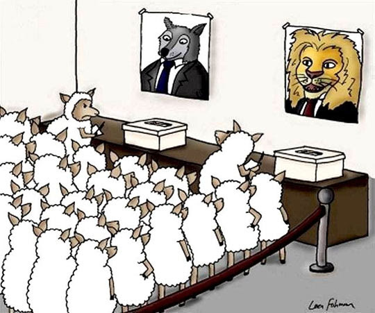 Αποτέλεσμα εικόνας για Funny vote
