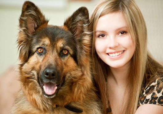 In Home Dog Training For Los Angeles and San Fernando Valley | The Dog Savant