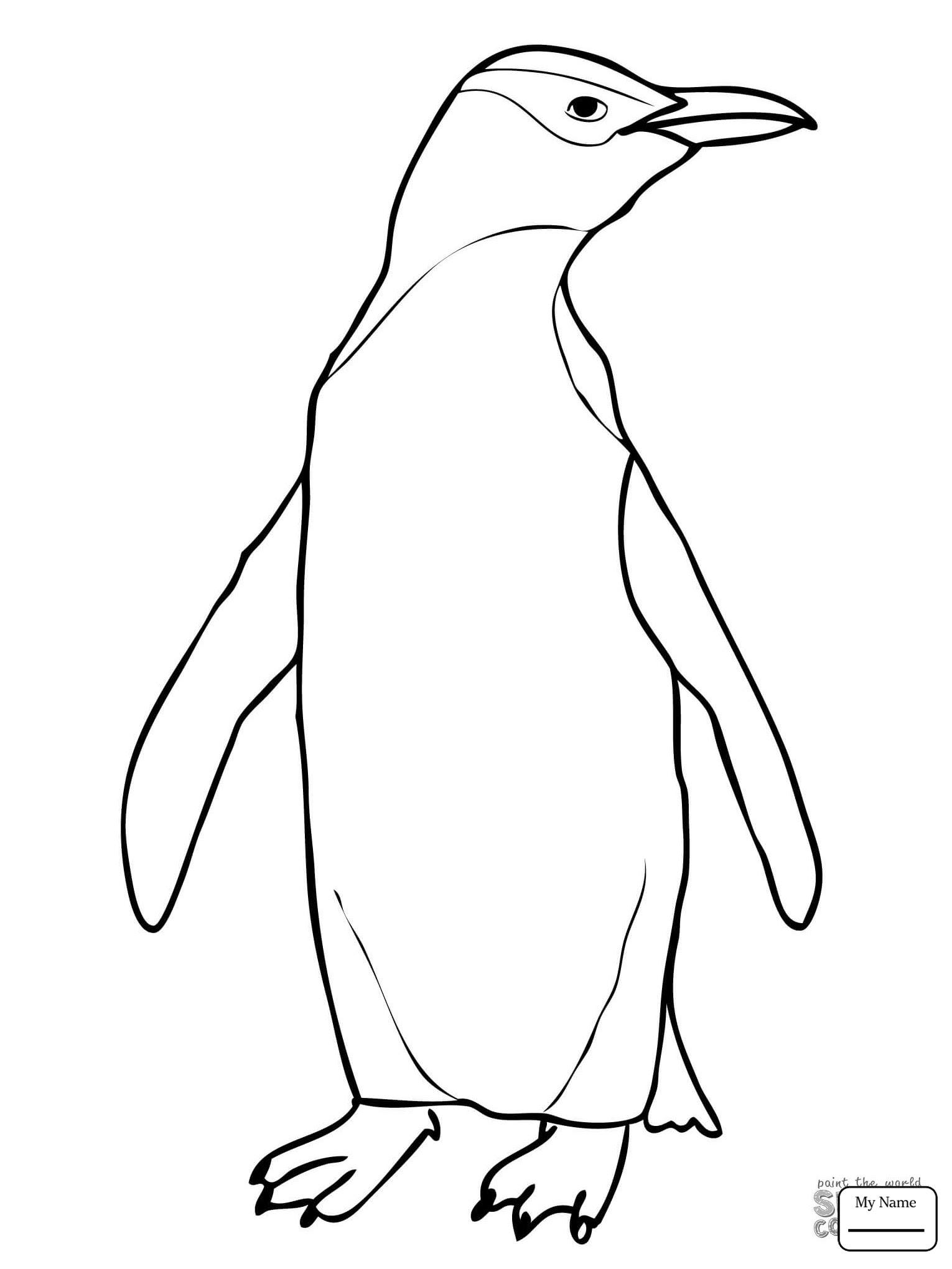 ausmalbild pinguin familie  cartoonbild