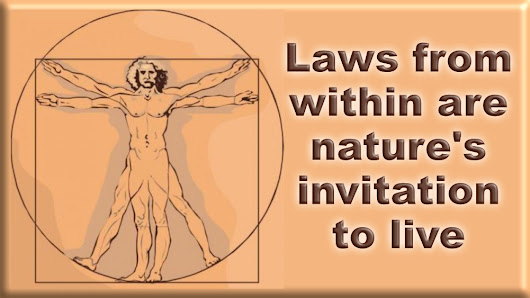 Discover Nature's Invitation to Live in integrity - Natural Law Matters
