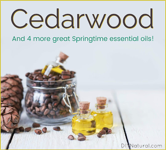 Cedarwood Essential Oil & 4 Other Essential Oils For Spring DIY Projects