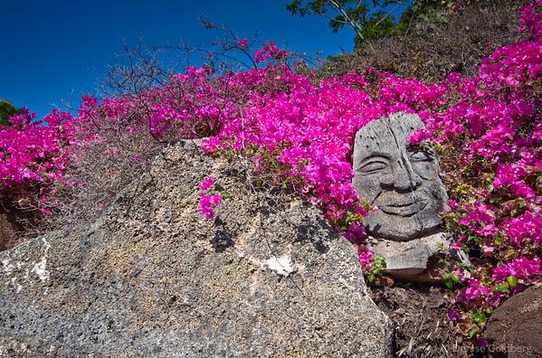Pua Mau botanical garden sculpture