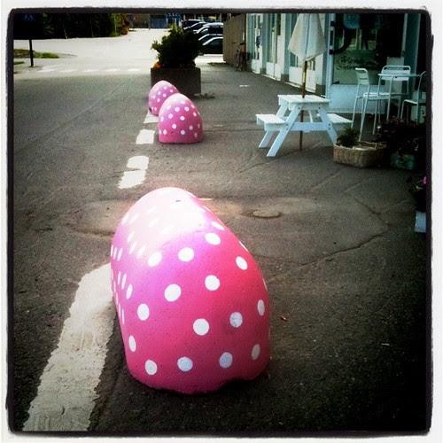pink dotty pigs