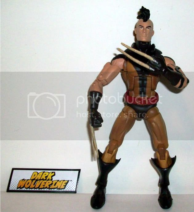 Daken photo MarvelLegends021.jpg