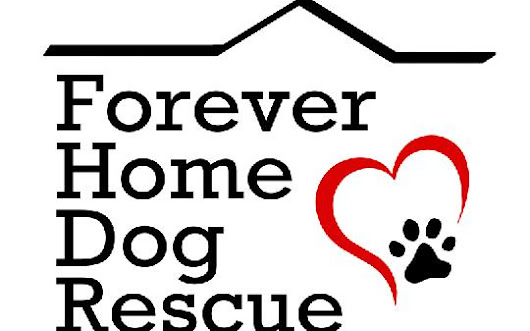 Forever Home Dog Rescue | Petfinder.com