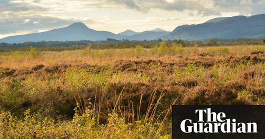 15 of the best easy rural escapes from UK cities | Travel | The Guardian