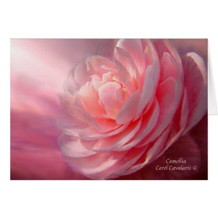 Camellia ArtCard card