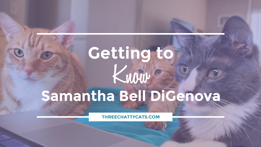 Getting to Know Samantha Bell DiGenova | Three Chatty Cats