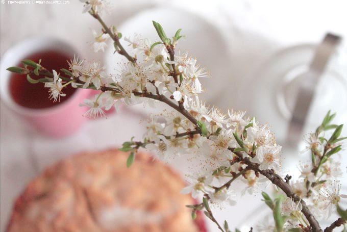 http://i402.photobucket.com/albums/pp103/Sushiina/cityglam/spring6_zps7e11d3af.jpg?t=1365352936
