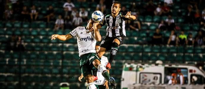 Figueirense x Palmeiras (Foto: THIAGO PEDRO - Agência Estado)