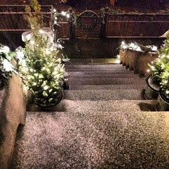 Just as we finished hanging the garlands, snow of the started falling. Now that's the spirit!