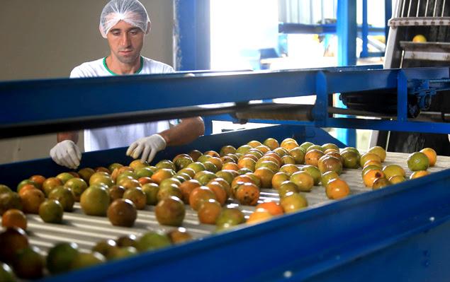 Linha de produção de suco da empresa Life Sucos, em Tabatinga (SP)