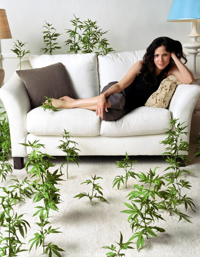 weeds season 7 episode 1. Episode 1